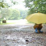 レイングッズ子供用 雨の日の通学通園の準備は済みましたか?お薦めはこちら