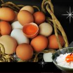 料理別専用たまごでいつものご飯がひと味違う?専用卵でちょっと贅沢な食卓に!