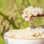 お米の通販利用で安く楽々購入 あきたこまちやコシヒカリ ブレンド米
