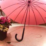 おしゃれなマイ傘袋で店内でも車内でも!濡れない、濡らさないを実現